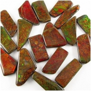 1 Ammolite triplet free form cabochon gemstone 14 x 34mm to 20 x 44mm 4 to 6mm thick