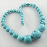 Turquoise Campitos graduated round gemstone beads (S) Approximate size 4 to 19mm 15.5 inch