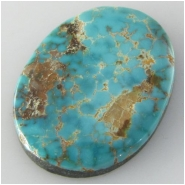 1 Turquoise Cheyenne cabochon gemstone (N) Approximate size 19.5 x 26.1 x 4mm deep Backed