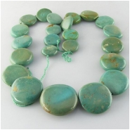 Turquoise Maan Shaan graduated coin gemstone beads (S) Approximate size 11 to at least 20mm 15.5 inch