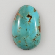 Hubei Turquoise Freeform Gemstone Cabochon (S) Approximate Size 17.6 x 27.5mm