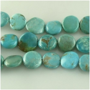 Turquoise Hubei  irregular coin gemstone beads (S) Approximate size 11 to at least 13mm 16 inch