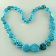 Turquoise Kingman graduated irregular coin gemstone beads (S) Approximate size 6 to at least 14mm 16 inch
