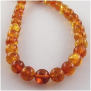 Amber Baltic round gemstone beads (N) Approximate size 5.4 to 5.6mm 16 inch