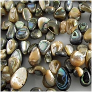 Abalone shell drop briolette gemstone beads (N) 5 x 8mm to 8 x 11mm size variation on 16 inch strand