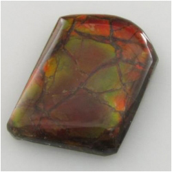 1 Ammolite freeform triplet cabochon gemstone Approximatey 17 x 23 x 4.1mm thick One only