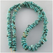 Turquoise Lone Mountain graduated nugget Zachery process gemstone beads Approximate size 3.9 x 6mm to 5.9 x 10.3mm 18 inch