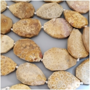 1 Fossilized Coral Faceted Slab Gemstone Bead (N) Approximate size 28.47 x 41.09mm to 35.75 x 44.61mm