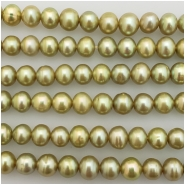 Pearl light green semi round rice bead (D) Approximate size 4.91 to 5.84mm x 4.25 to 4.92mm 16 inches