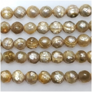 Pearl bronze faceted semi round bead (D) Approximate size 5.23 to 6.06mm 16 inches