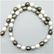 Pearl Fresh Water Oval Ringed Bead (D) Approximate size 8.92  to 9.95mm x 8.04 to 8.49mm, 16 inches