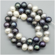Pearl Fresh Water Semi Oval  Bead (D) Approximate size 8.48 to 9.76mm x 9.72 to 10.64mm, 14.75 inches