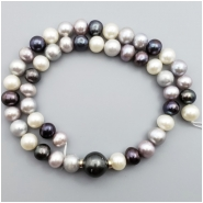 Pearl Semi Round to Oval Freshwater bead (N) Approximate size 7.48 to 13.31mm x 8.11 to 12.54, 15.5 inches