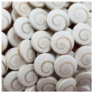 Silvermouth Shell Flat Round Bead (S) Approximate size 16mm, 16 inches