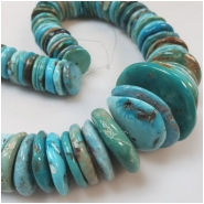 Hubei Turquoise Old Stock Graduated Irregular Disc Gemstone Beads (S) Approximate size 16.92 to 37.20mm 16 inches