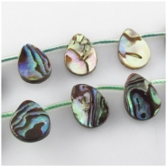 14 Paua Shell flat drop briolette beads(N) Approximate size 9 x 12mm