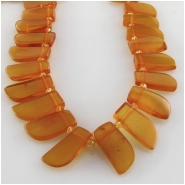 Amber Baltic petal top side drilled briolette gemstone beads (N) Approximate size 4 x 10mm to 6 x 15mm 16 inch